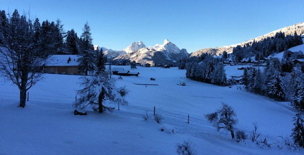 Traumhaftes Wetter und mit den Ski direkt auf die Hornberg-Sonnenterrasse